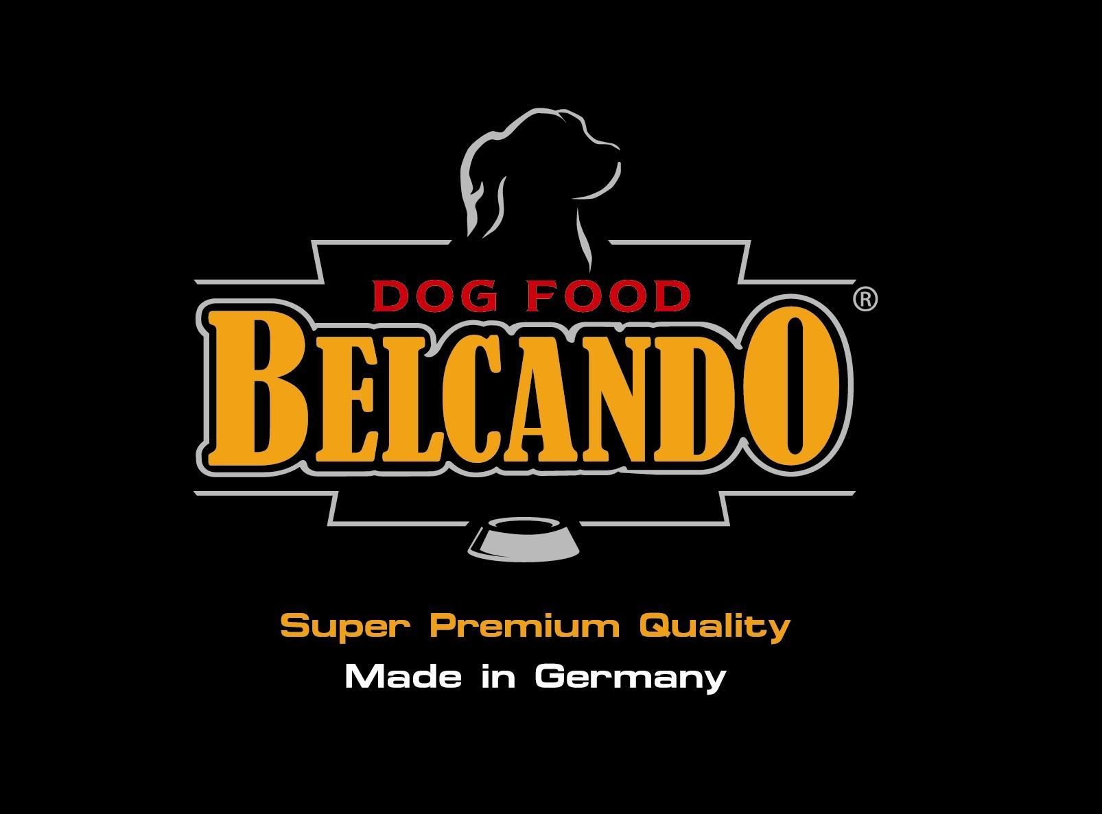Belcando-Logo-für-Powerpoint-1